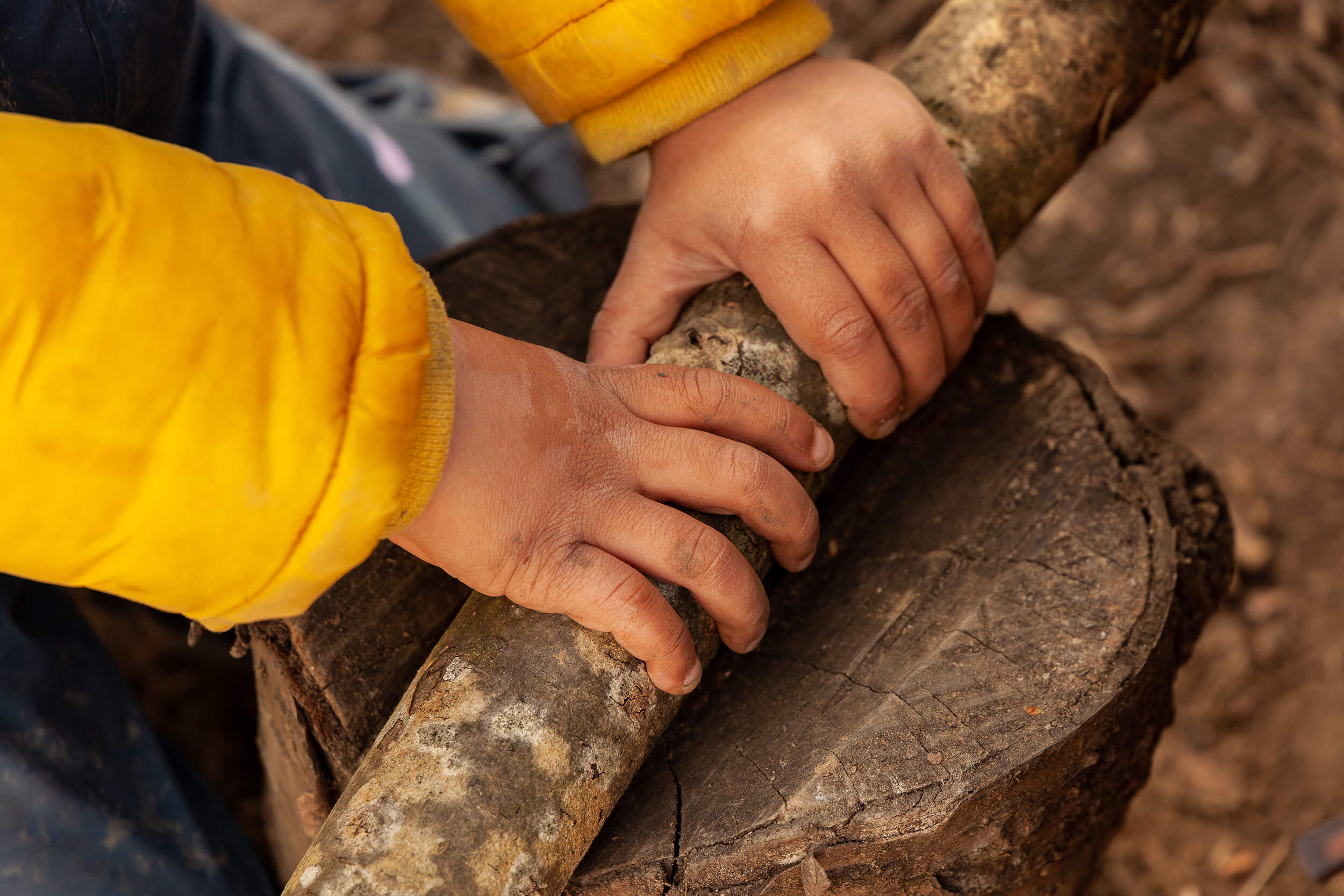 Muddy hands holding a branch