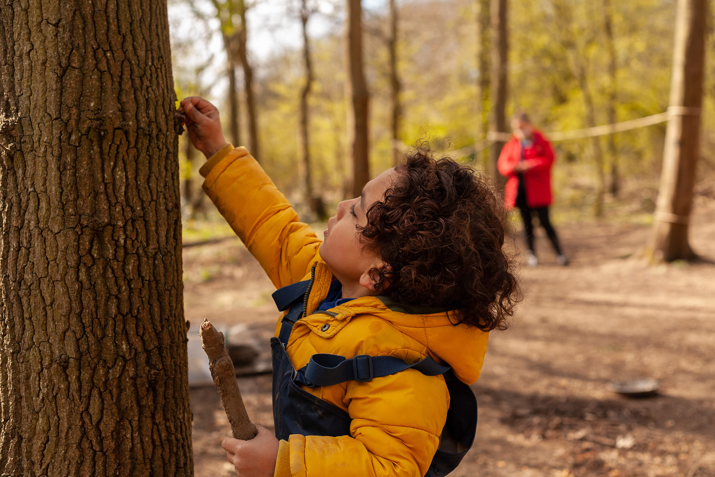 Boy looking at a tree