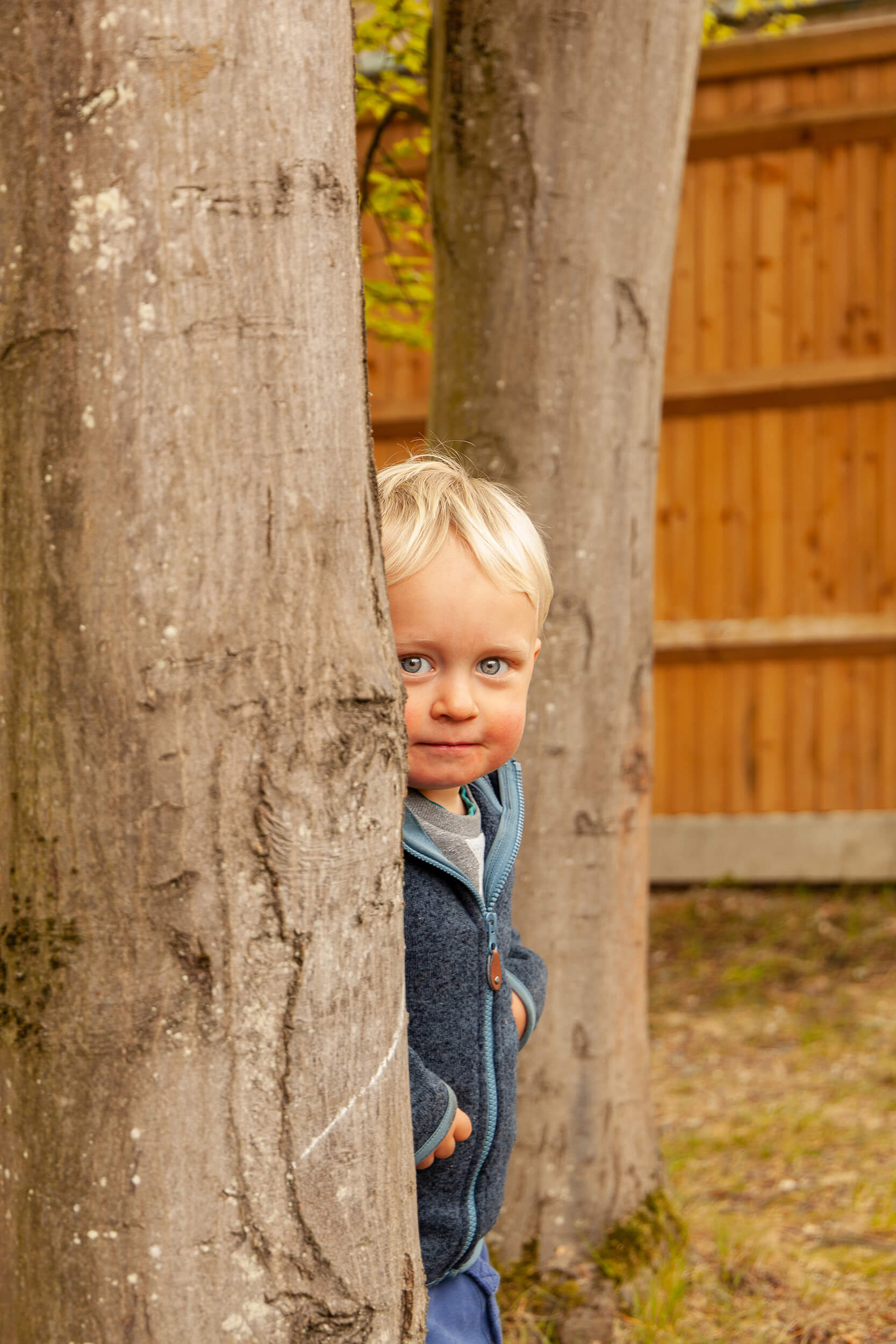 Boy looking from behind a tree
