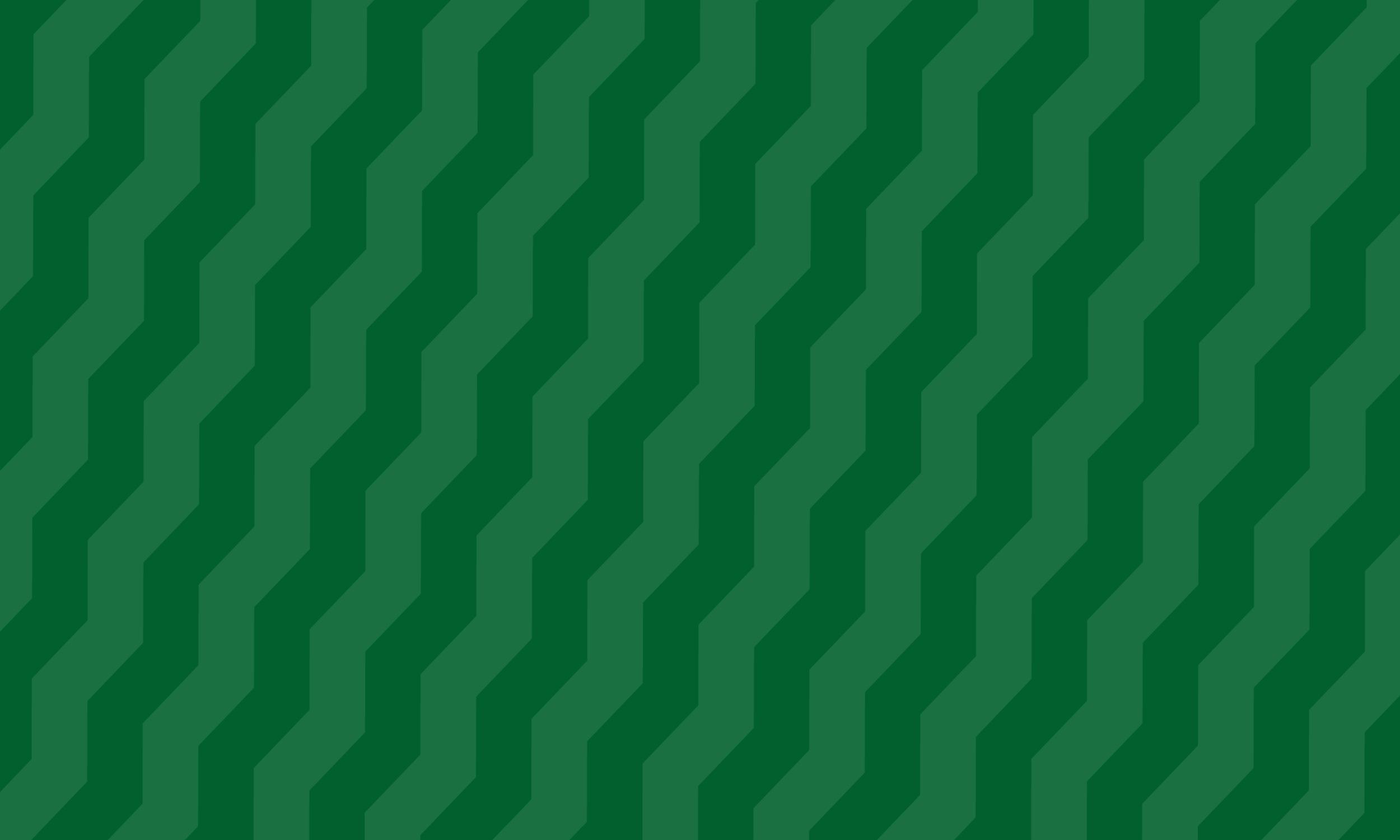 Forest zig zag pattern