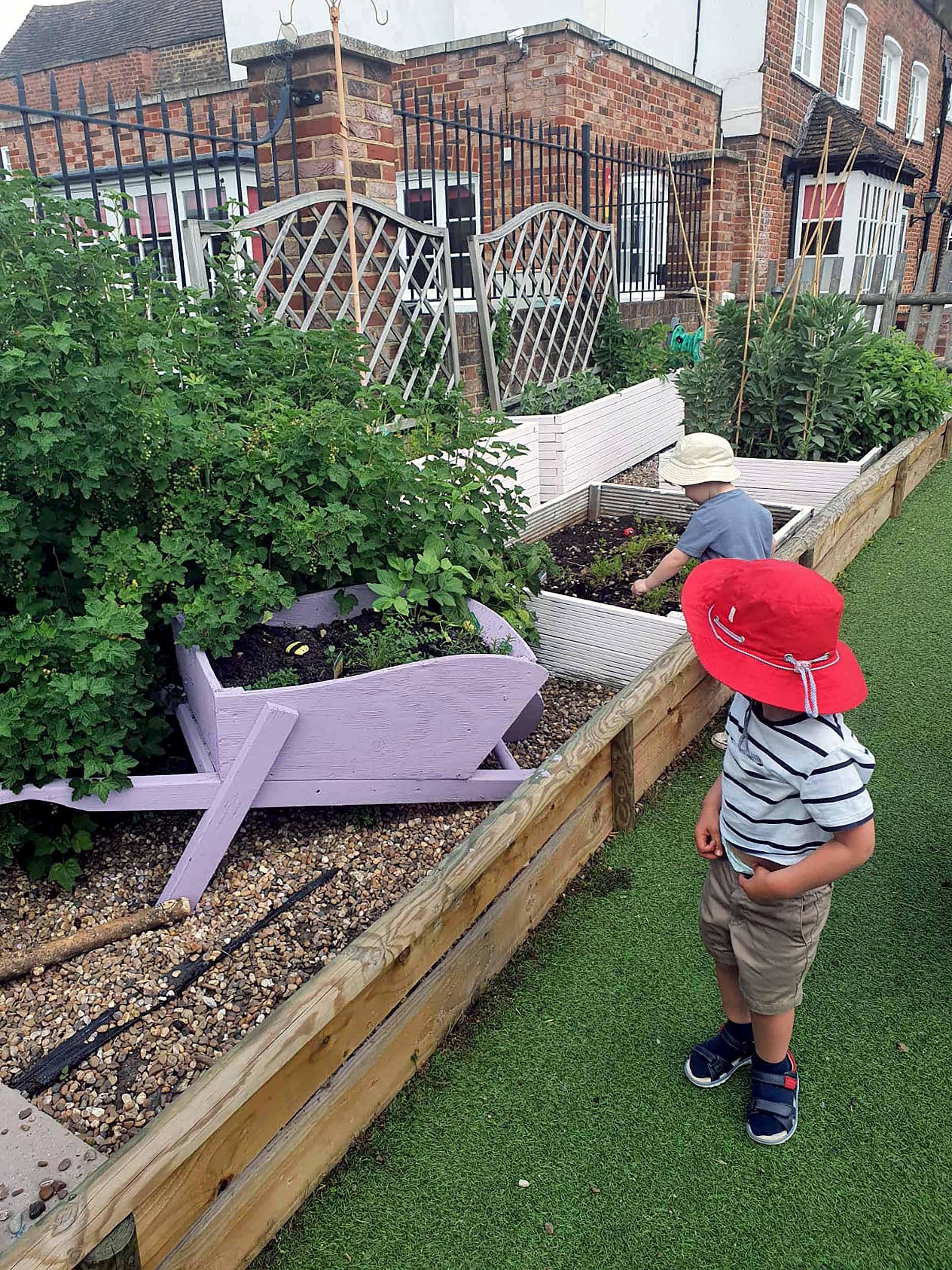 Grow your own at Nursery